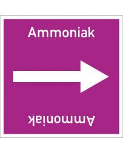 Rohrleitungskennzeichnung viereckig Ammoniak   Aufkleber · Magnetschild · Aluminiumschild