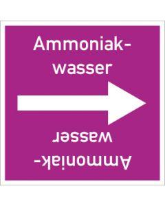 Rohrleitungskennzeichnung viereckig Ammoniakwasser   Aufkleber · Magnetschild · Aluminiumschild